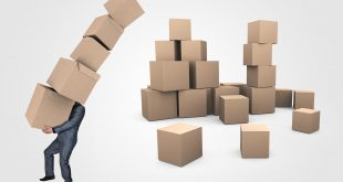 Amazon Flex job